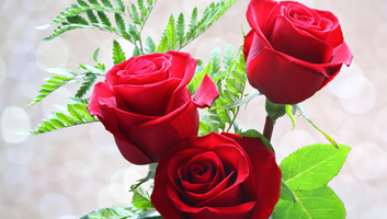 With this App I Thee Love – Chocolates, Flowers or Both!